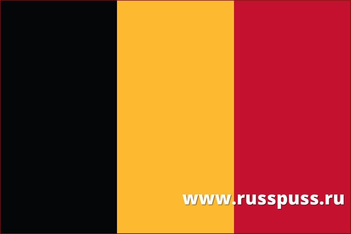 Эскорт работа в Бельгии