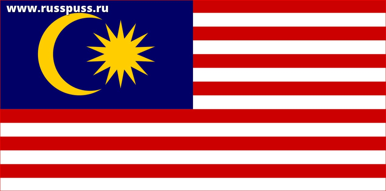 Работа в Малайзии для девушек